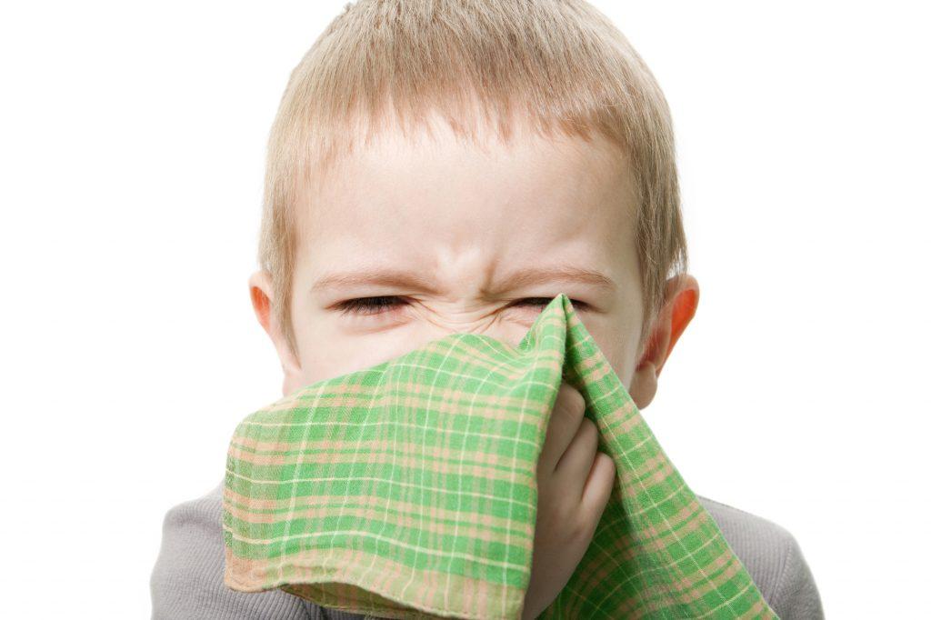 home air purifier, uv air purifier, whole home air purifier, air purification system, commercial air purifier, office air purifier, uv light air purifier